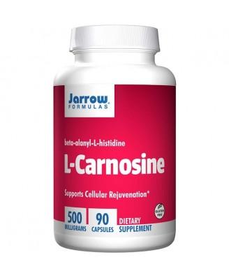 L-Carnosine Beta-Alanyl-L-Histidine 500 mg (90 Capsules) - Jarrow Formulas