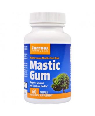 Mastic Gum 500 mg (60 Vegetarian Capsules) - Jarrow Formulas