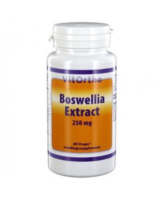 Now Foods, Boswellia Extract, 250 mg, 60 Veg Caps