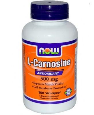 Aminozuren - L Carnosine 500 mg (100 vegetarische capsules) - Now Foods