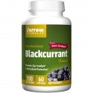 Blackcurrant 200 mg (60 Vegetarian Capsules) - Jarrow Formulas